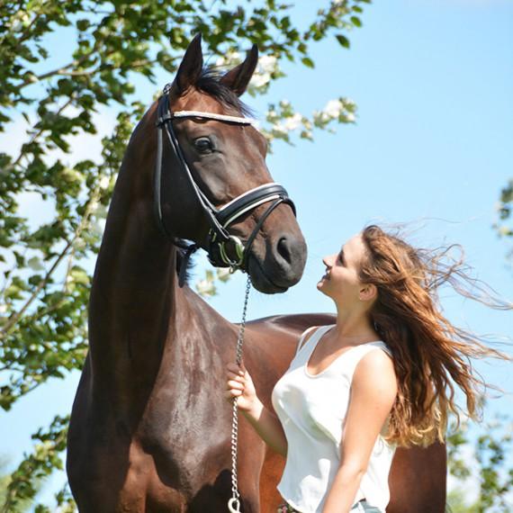 sylvana de bruin dieren fotografie en video paarden honden (34)