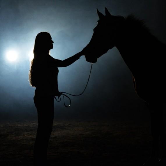sylvana de bruin dieren fotografie en video paarden honden (6)